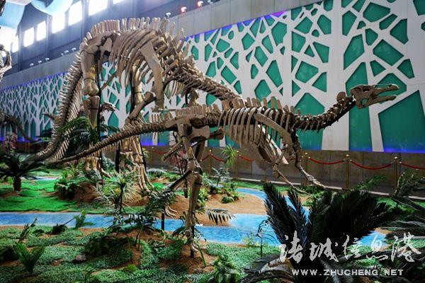 诸城南湖动物园规划图
